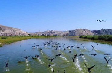 Nallihan Kus Cenneti bird sanctuary