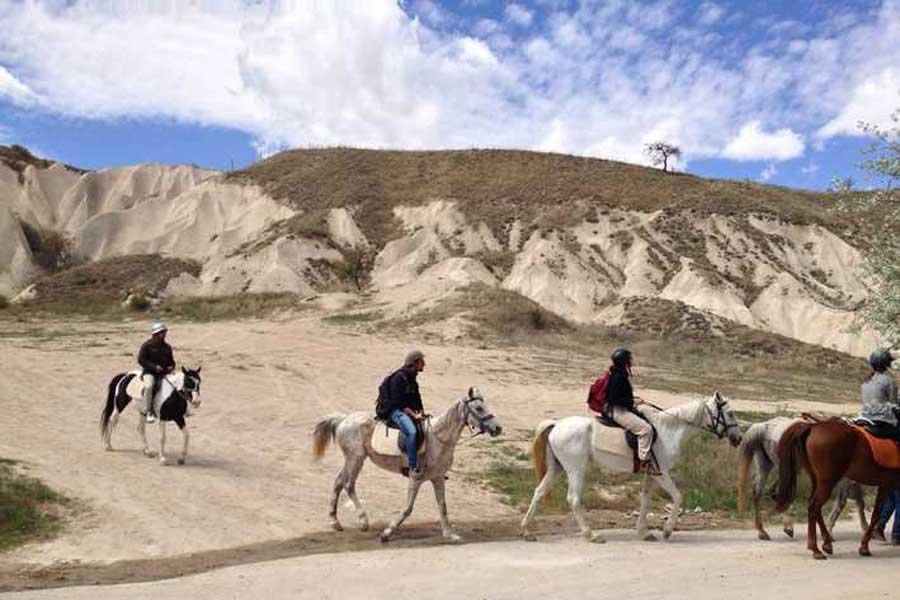 horse cappadocia
