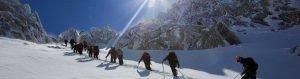 Team work in mountain trek